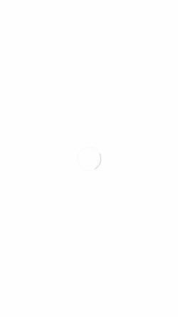 Vorschau der mobilen Webseite www.iron-maik.de, Franz, Maik