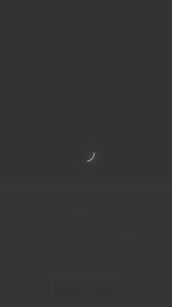 Vorschau der mobilen Webseite www.city-seg.de, city-seg - SEGWAY Touren Heidelberg, Baden-Baden und Karlsruhe
