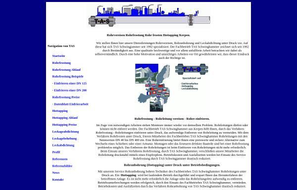 Vorschau von leaksealing.de, leaksealing.de - Leckabdichtung während des Betriebes