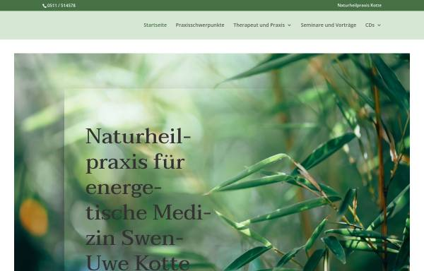 Vorschau von www.naturheilpraxis-kotte.de, Swen-Uwe Kotte