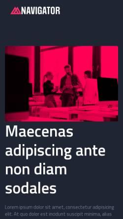 Vorschau der mobilen Webseite www.behindertenausweis24.de, Behindertenausweis - Schwerbehindertenausweis