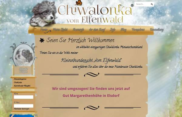 Vorschau von www.chiwalonka.com, Chiwalonka: Hundezucht vom Elfenwald