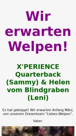 Vorschau der mobilen Webseite bearded-xperience.de, X´Perience Bearded Collies