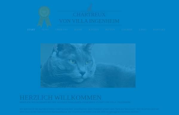 Vorschau von www.chartreux-potsdam.de, Von Ingenheim