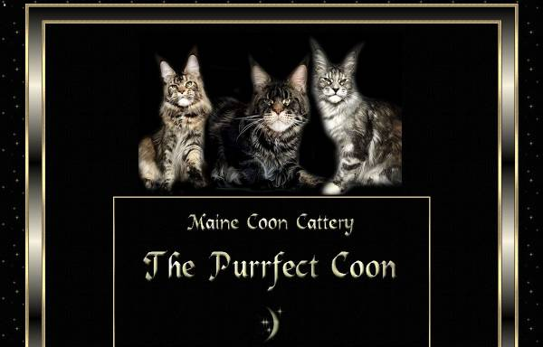 Vorschau von www.purrfectcoon.at, The Purrfect Coon