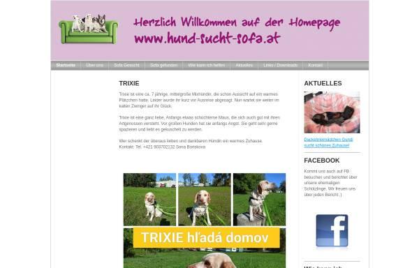 Vorschau von hundstruppe.jimdo.com, Tierschutzverein Hund-sucht-Sofa