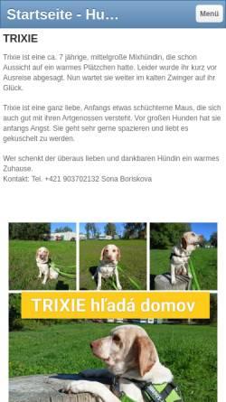 Vorschau der mobilen Webseite hundstruppe.jimdo.com, Tierschutzverein Hund-sucht-Sofa