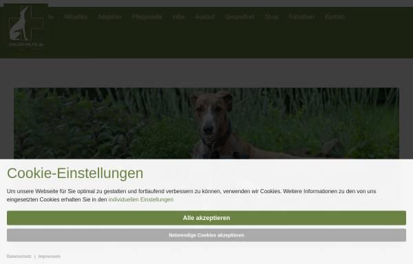 Vorschau von www.galgo-hilfe.de, Galgo-Hilfe