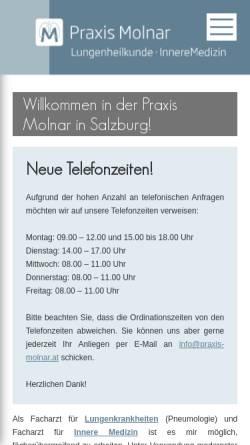 Vorschau der mobilen Webseite www.praxis-molnar.at, Molnar, Dr. Clemens