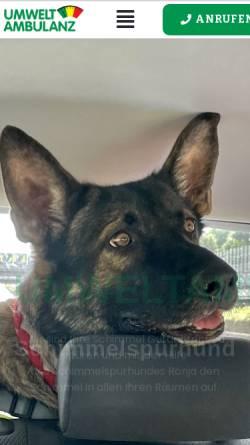 Vorschau der mobilen Webseite schimmelspuerhund.de, Umweltambulanz Dipl. -Ing. Christian Tegeder