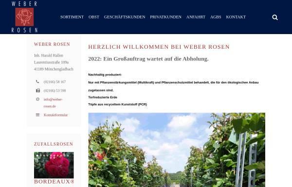 Vorschau von www.weber-rosen-shop.de, Weber Rosen - Harald Hallen