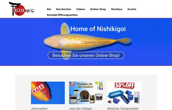 Vorschau von www.koinet.de, Koinet GmbH, Jürgen Wazian