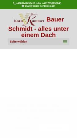 Vorschau der mobilen Webseite www.bauer-schmidt.com, Bauer Schmidt GmbH & Co. KG