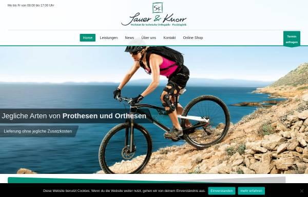 Vorschau von sauer-knorr.de, Sauer und Knorr GmbH