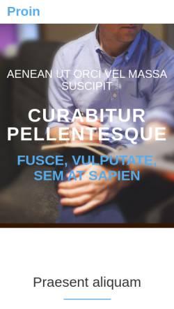 Vorschau der mobilen Webseite www.thiel-pinter.de, Ingenieurbüro Thiel und Pinter
