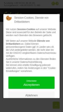 Vorschau der mobilen Webseite www.floristik21.de, Floristik21.de, Siegfried Schuster GmbH
