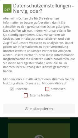 Vorschau der mobilen Webseite www.p17.de, p17 GmbH