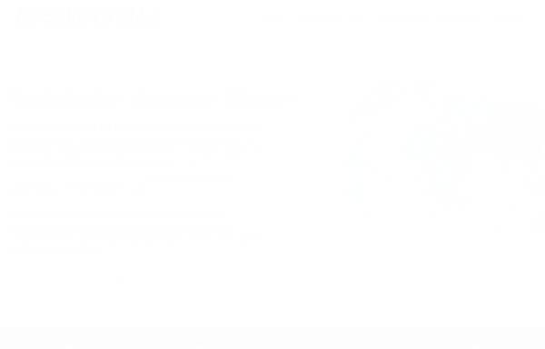 Vorschau von spektrume.de, Spektrum E Webdesign
