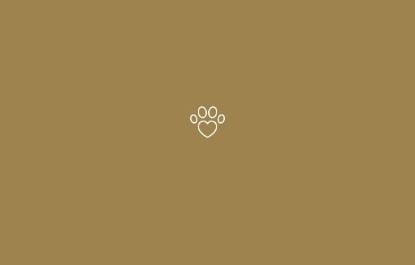 Vorschau von akademie-tiertherapie.de, Akademie für Tiertherapeutische Berufe GbR