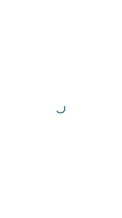 Vorschau der mobilen Webseite webdesign-schneider.de, Webdesign & SEO-Agentur Schneider