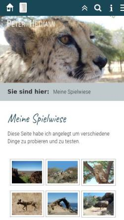 Vorschau der mobilen Webseite www.peter-heimann.de, Peter´s Paludarium und Koiteich